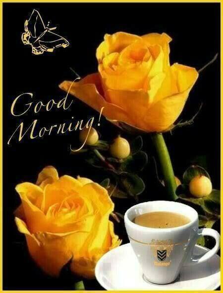 Good Morning Morning Good Morning Morning Quotes Good Morning Quotes Morning Quote Good Morning Quo Good Morning Cards Good Morning Quotes Good Morning Flowers
