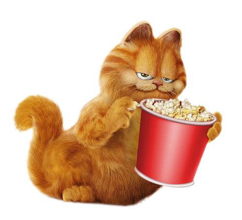 Garfield Cute cartoon wallpapers, Funny cat photos, Cat