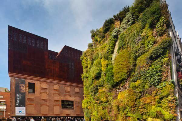 rean jardines verticales ante la falta de espacios verdes en urbes  http://bit.ly/1WzXjD2