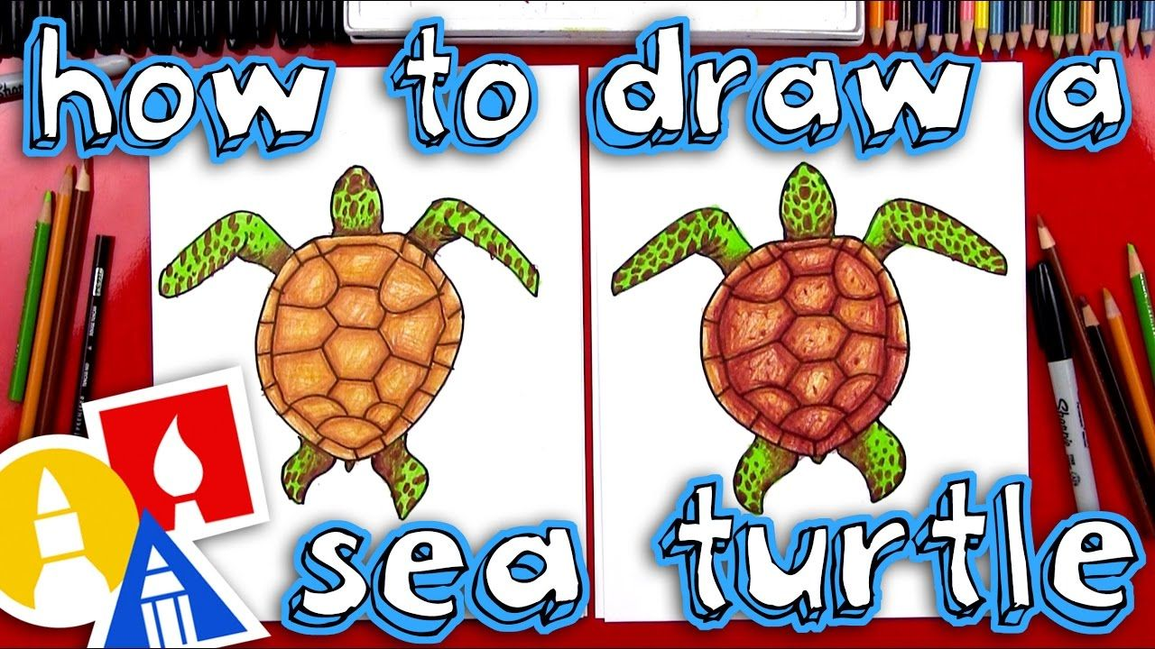 How To Draw A Realistic Sea Turtle Youtube Art For Kids Hub Sea Turtle Art Turtle Drawing