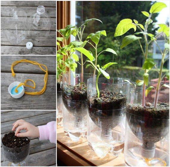 Self Watering Plastic Bottle Planter Diy Gardening That