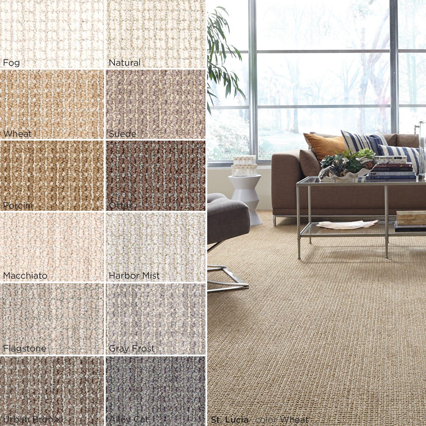St Lucia Zz038 00214 Carpet Flooring Anderson Tuftex Carpet Staircase Carpet Flooring Home Carpet