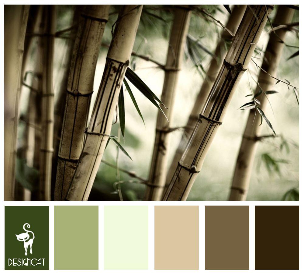 Bamboo 2: Green, sage, Beige, Brown, Sand - Colour Inspiration Pallet