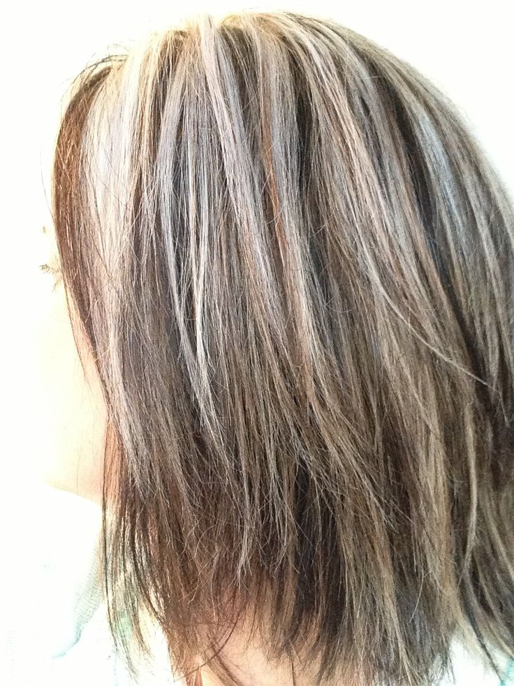 Dark Brown Light Brown Ash Blonde Blending Gray Girl Stuff Blending Gray Hair Gray Hair Highlights Hair Highlights