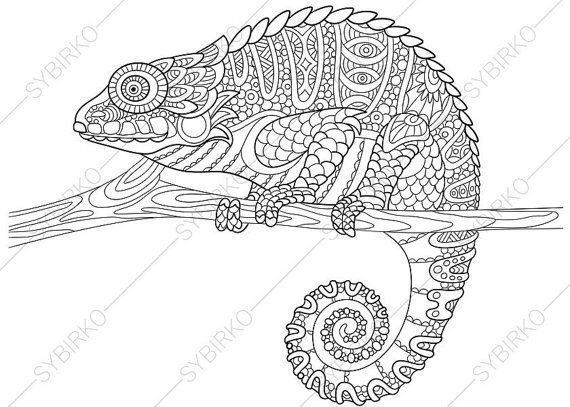 adult coloring pages chameleon zentangle doodle coloring book page for adults digital illustration instant download print - Chameleon Coloring Pages Print