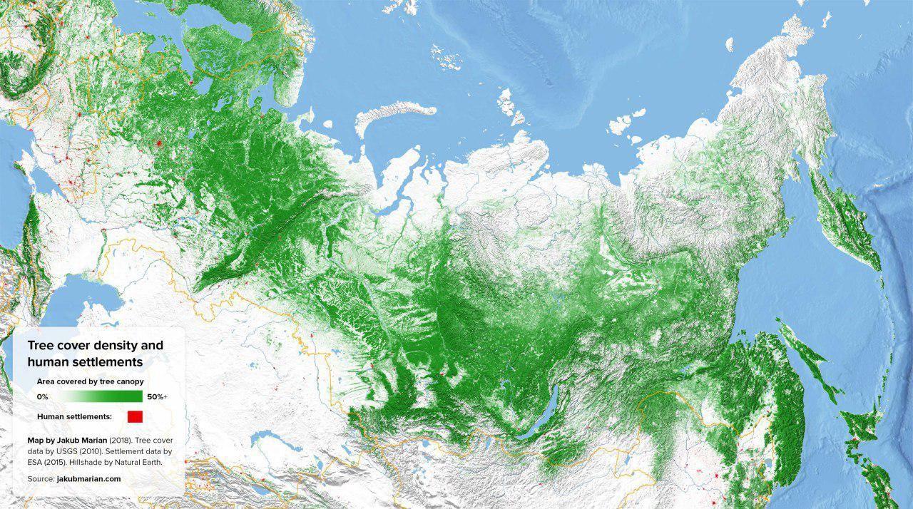 V Rossii Samaya Bolshaya Ploshad Lesa V Mire Okolo 8 15 Mln Km2