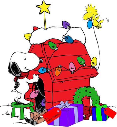 No Title Snoopy Christmas Charlie Brown And Snoopy Snoopy Pictures