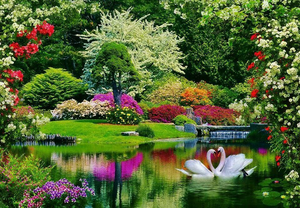 Bahar ve renkler | Manzaralar | Pinterest