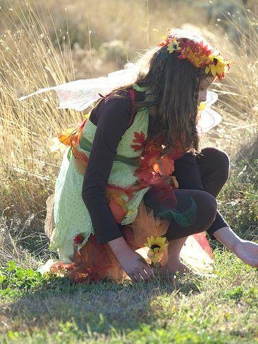 Fall Fairy Costume   woodland fairy costume   Fall/Halloween
