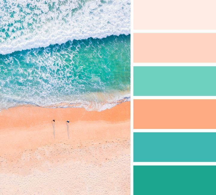 Peach and green color palette images