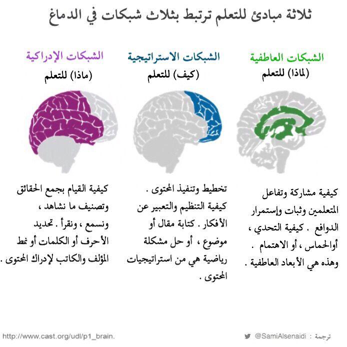 ثلاثة مبادئ للتعلم مرتبطة بثلاث شبكات في الدماغ Words Word Search Puzzle Education