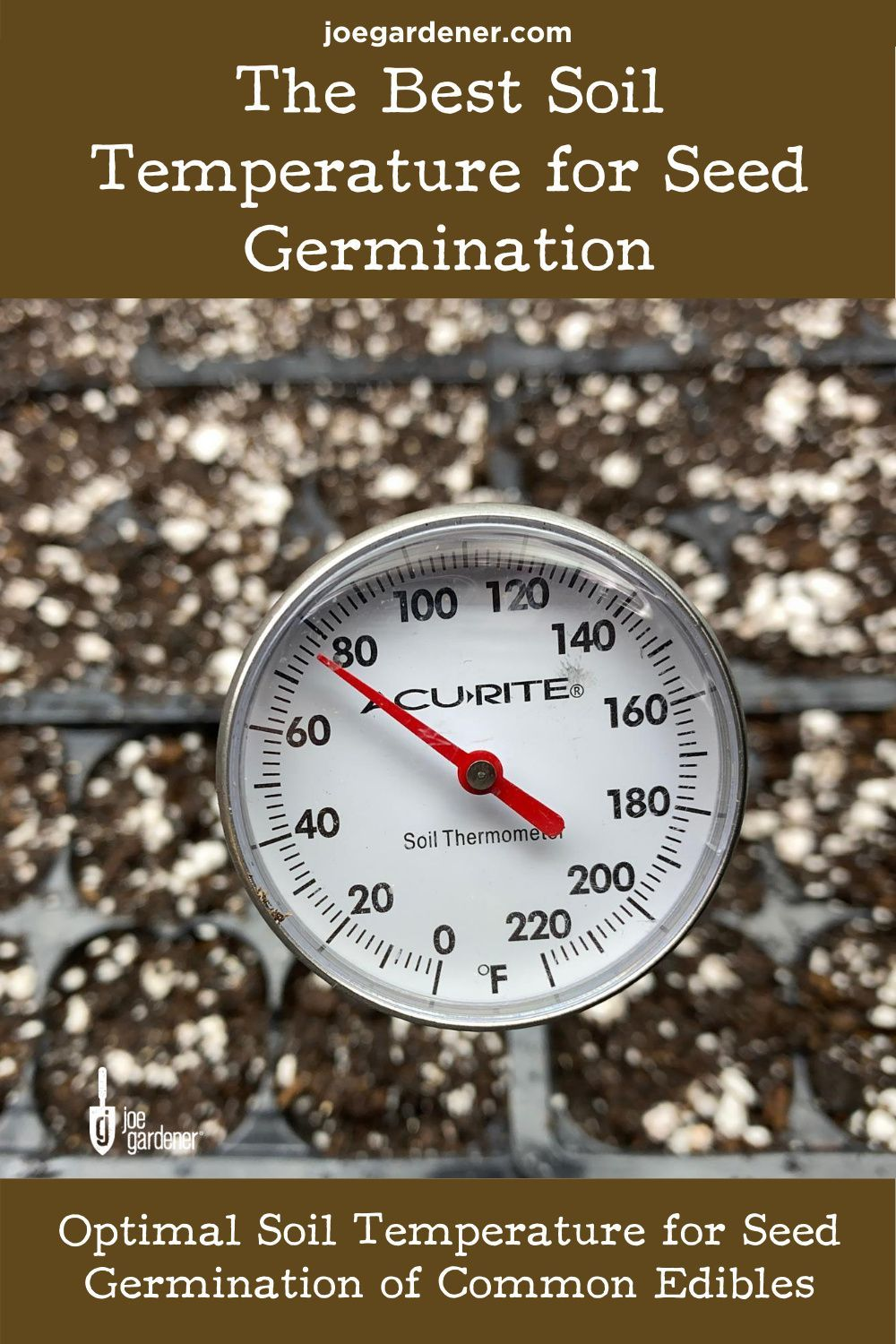 Best soil temperature for seed germination seed starting