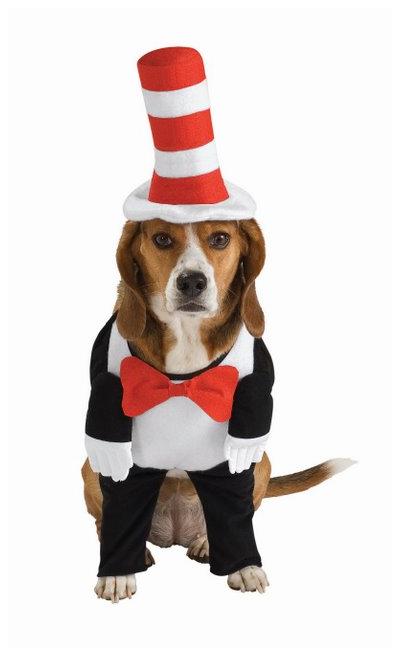 Dr. Seuss The Cat In The Hat Dog Costume-  sc 1 st  Pinterest & Dr. Seuss The Cat In The Hat Dog Costume- | Bark 4 Life | Pinterest ...