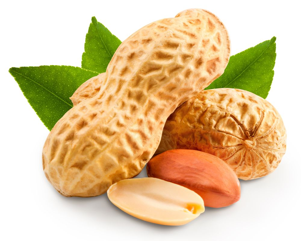 #Lifetimestyles Many researches today suggest that eating the foods that are rich in vitamin-E can help reduce the cancers associated with lung, stomach, liver, colon and other types of cancers. As a part of it, it is suggested to take the diet such as peanuts, almonds, sunflower seeds that are rich in vitamin E. Mostly the peanuts help in keeping the cells to strongly defense