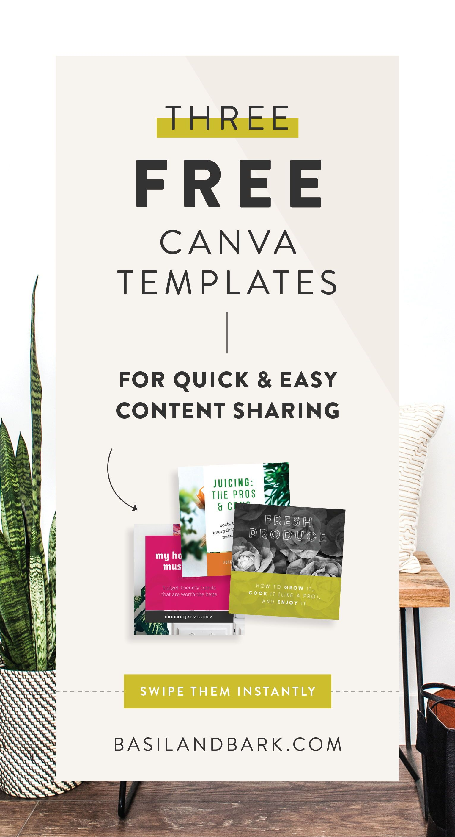 learn how to customize your free canva templates to be unique to