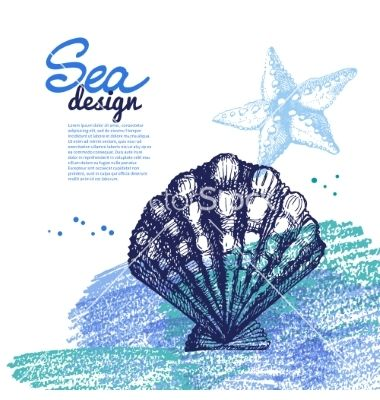 Seashell background sea nautical design vector 2680783 - by pimonova on VectorStock®