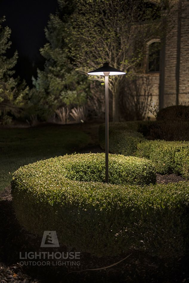 a tall area light brings this sculpted boxwood to life at night