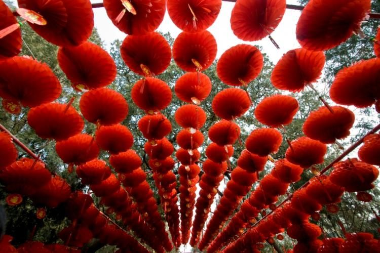 Spring Forward: Making the Most out of Chinese New Year