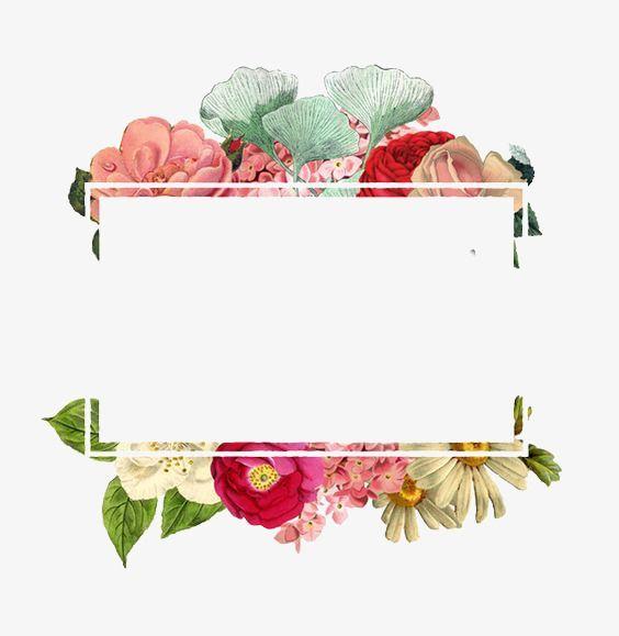 Flowers Border Square Border Border Png Transparent Clipart Image And Psd File For Free Download Floral Border Design Flower Frame Poster Background Design