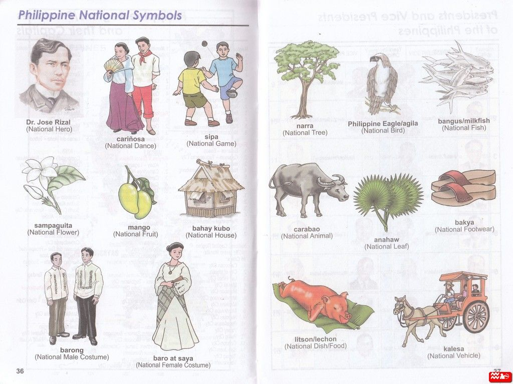 Philippine National Symbols With Pictures images Bituin