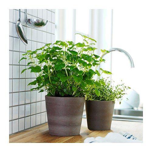 MANDEL urtepotteskjuler fra IKEA til krydderier og planter. Overfladebehandlingen indvendigt gør, at urtepotteskjuleren er vandtæt.