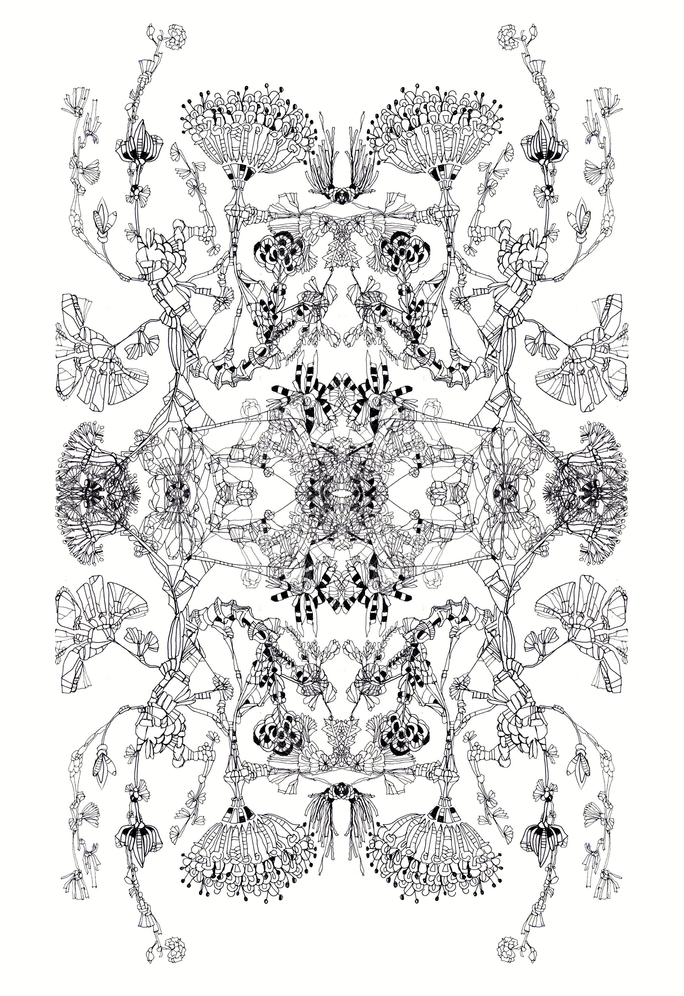 Botanical Specimens Ink Drawing Textile Design Doodle