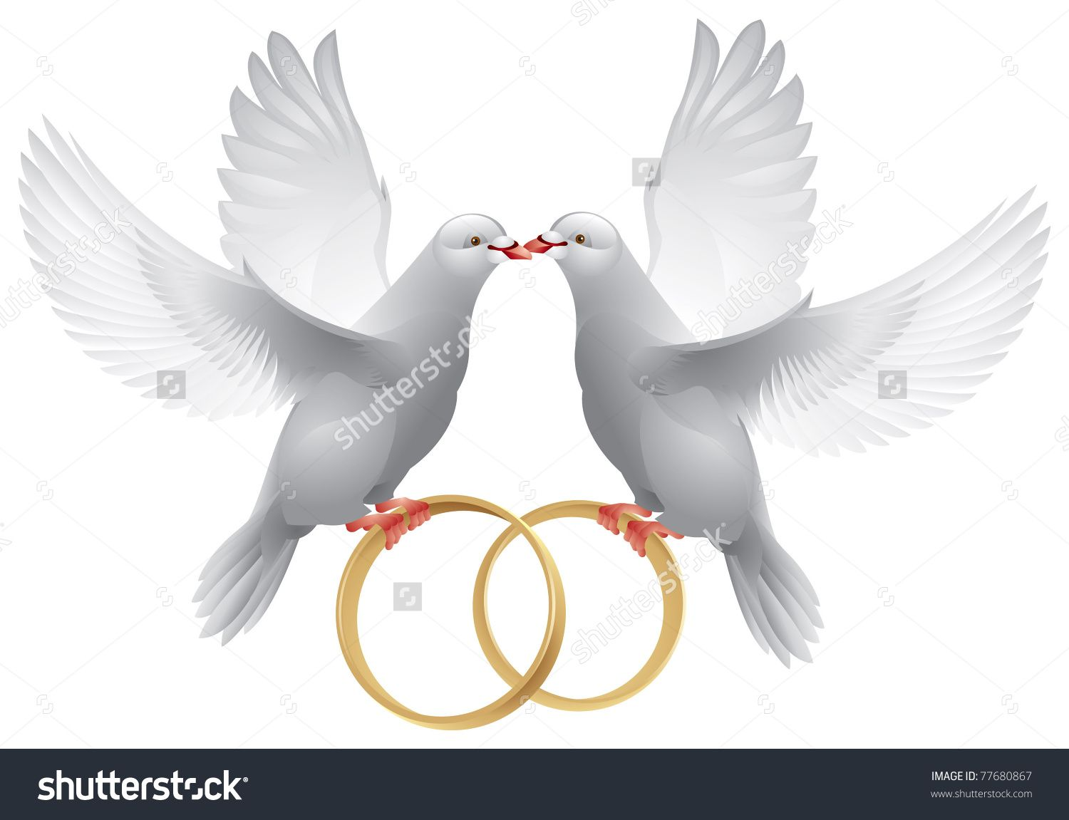 Wedding Doves With Rings Symbol Of Love And Wedding Decoration
