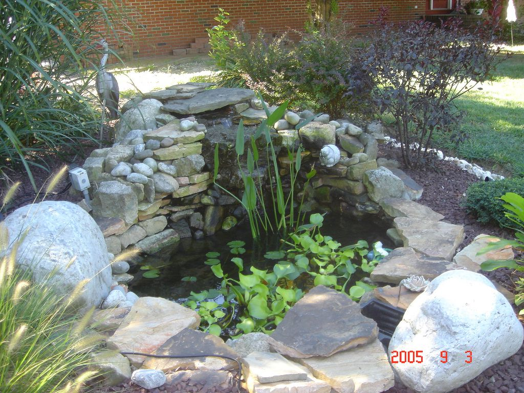 Small pond waterfall ideas small pond backyard ponds for Water garden ideas