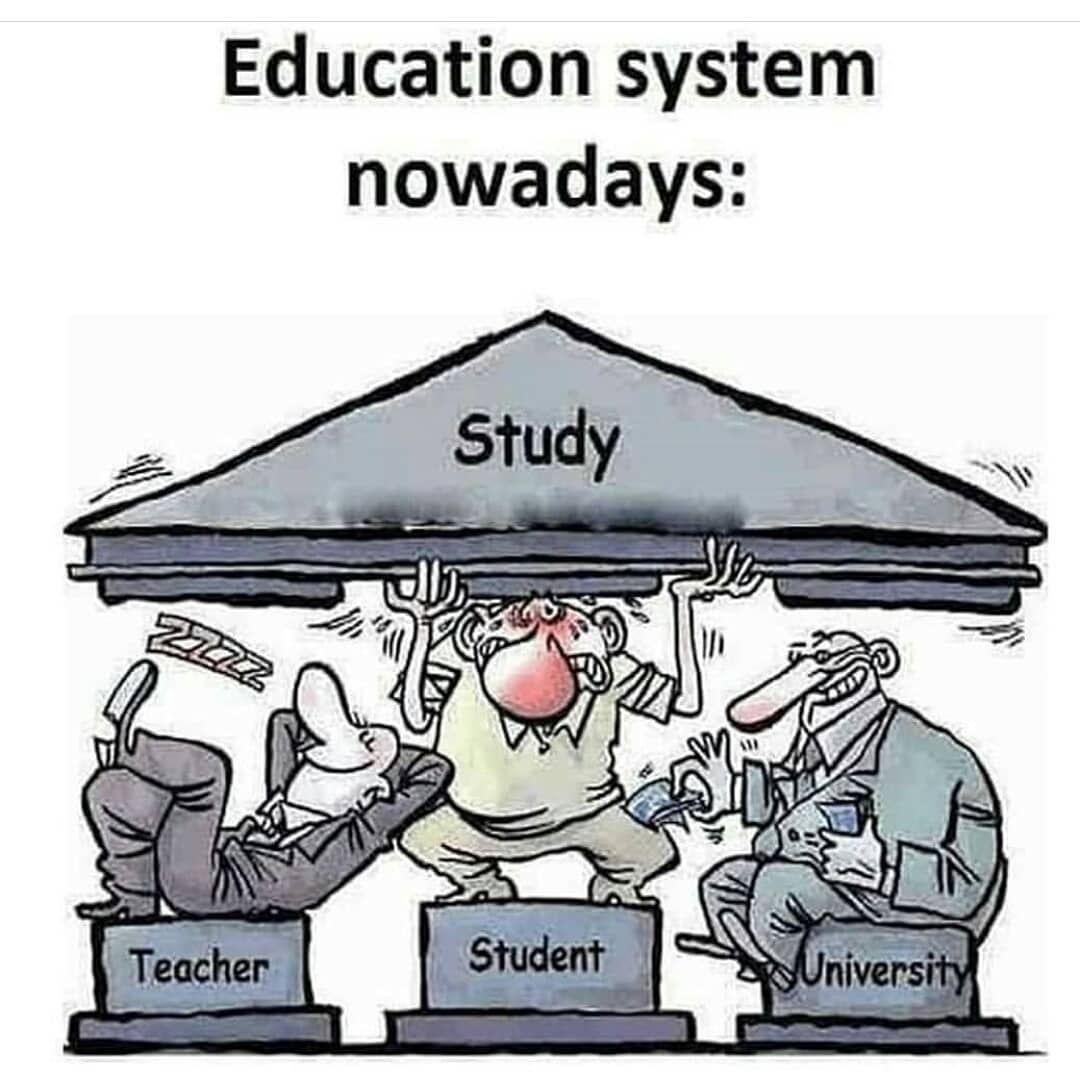 Epingle Sur Education