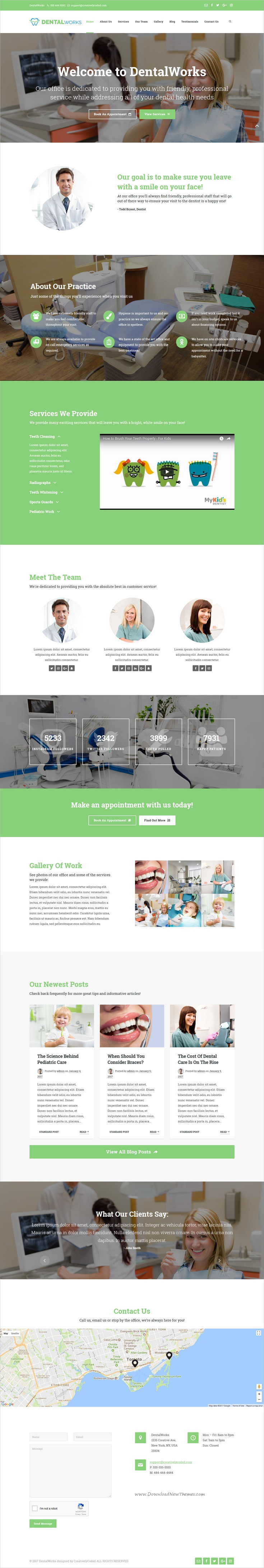 Logo Website Design Texas Dentist Tlc Pediatric Dentistry Dentist Branding Website Design Dental Design