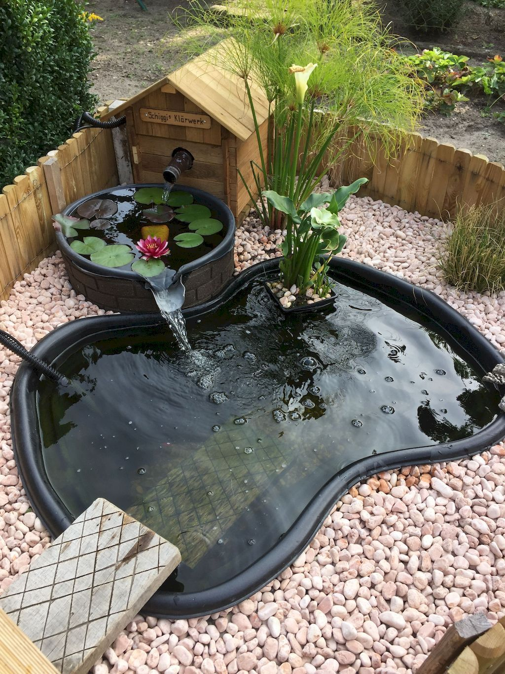 Having a fish pond in the garden is indeed very pleasant ...