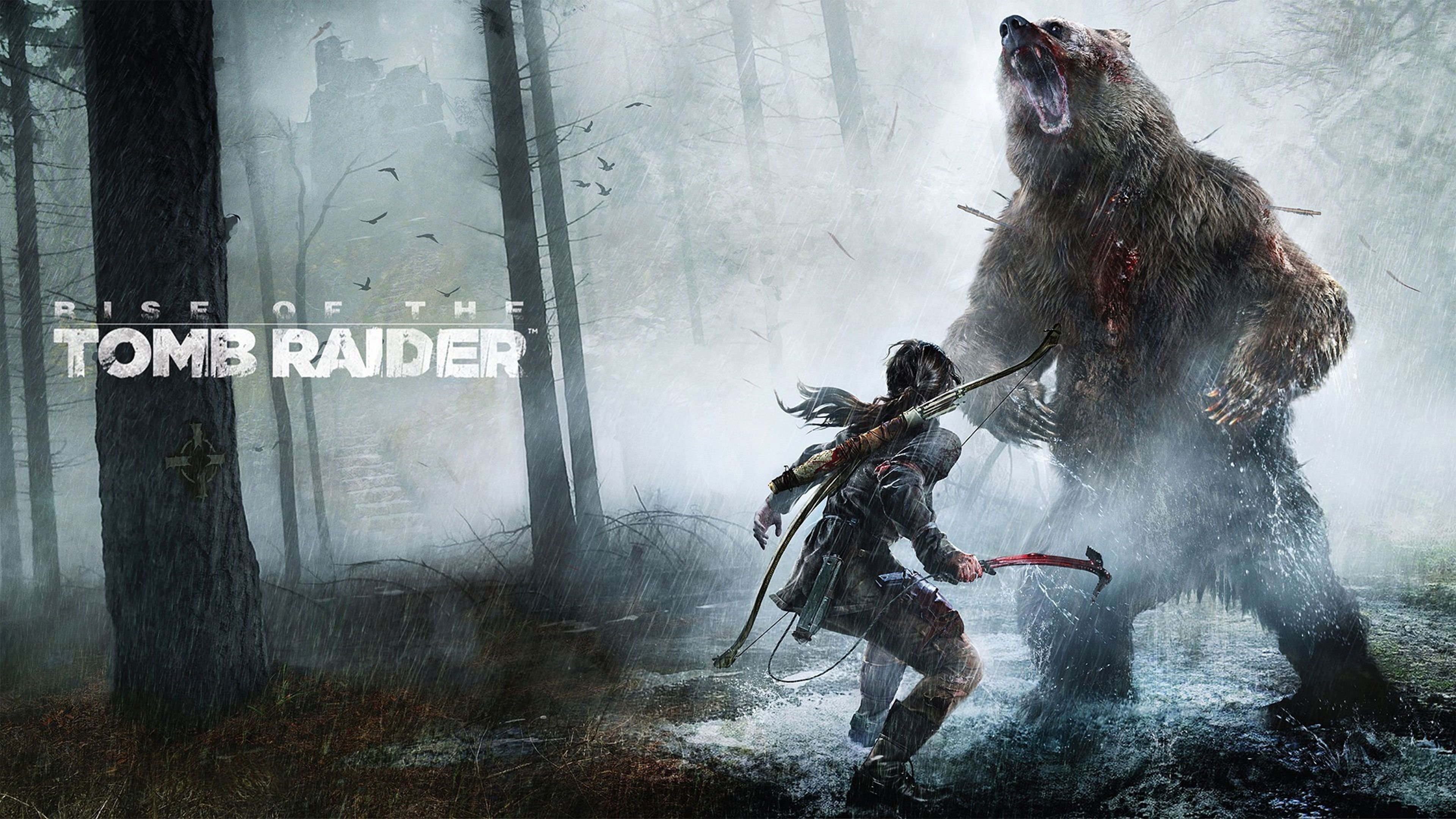 Rise Of The Tomb Raider Wallpapers In Ultra Hd 4k Tomb Raider Raider Ladrones De Tumbas