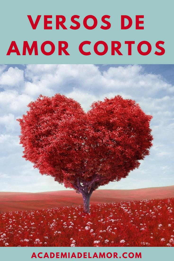 Versos De Amor Cortos Y Bonitos Para Enamorar En El 2020 Versos