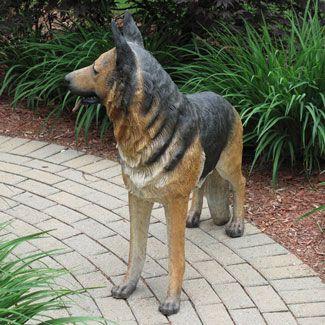 Pin By Don Henderson Christmas Night Inc On Dogs Shepherd Dog