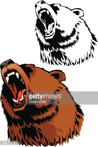 Bear growling. Each image is placed