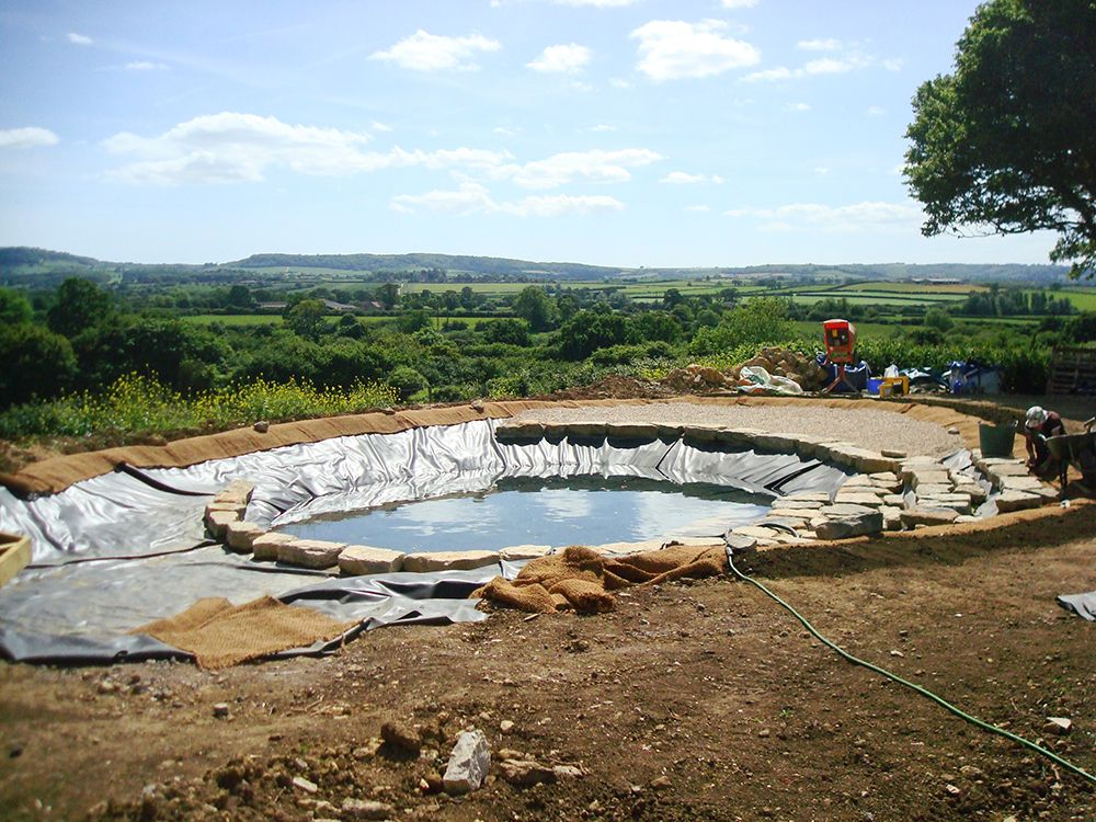 Landscape Pond & Waterfall Ideas For your Backyard