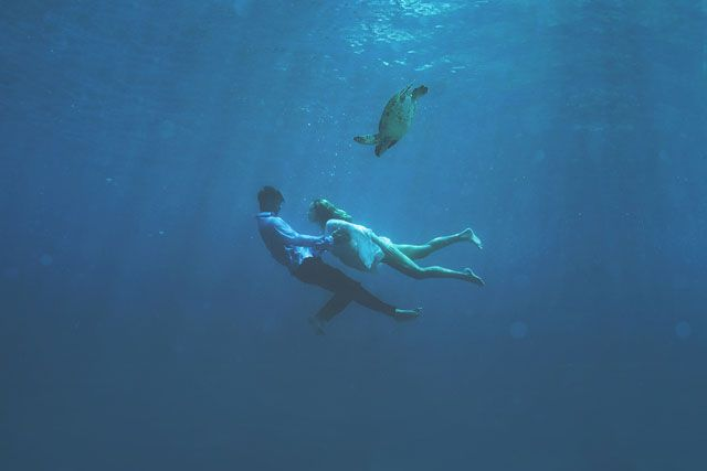 The Underwater Wedding Portraits_5