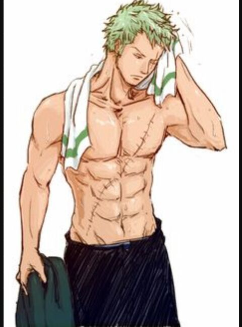 Zoro x Male Reader - Prologue | Place of randomness | Zoro one piece