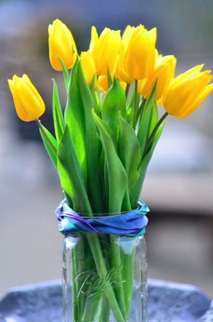 When Did Perfectionism Becomes So Trendy Reluctant Entertainer Yellow Tulips Pretty Flowers Tulips