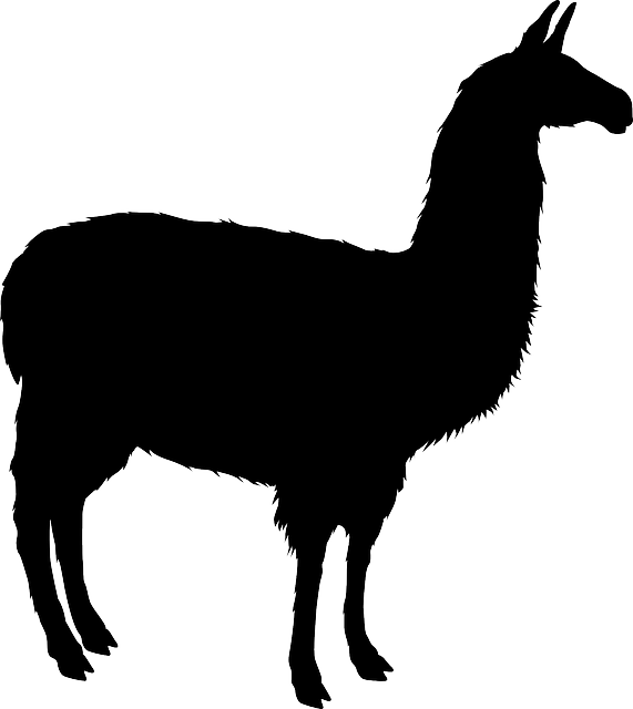 Image result for llama silhouette