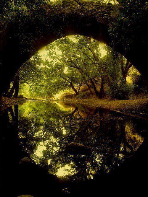 Naturaleza , puente , rio