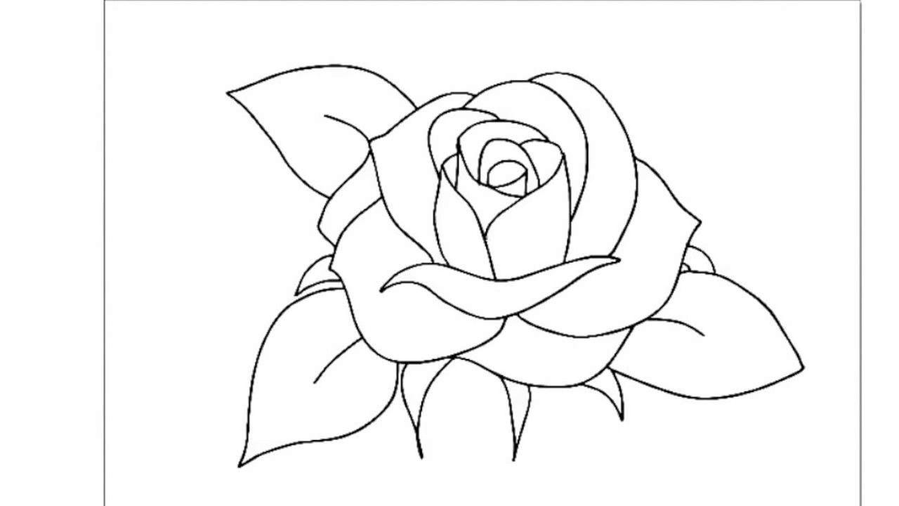 Rose Dessin Facile