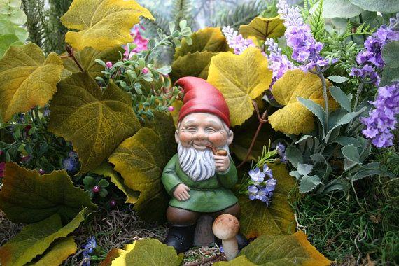 Gnome Garden: Pin On Home