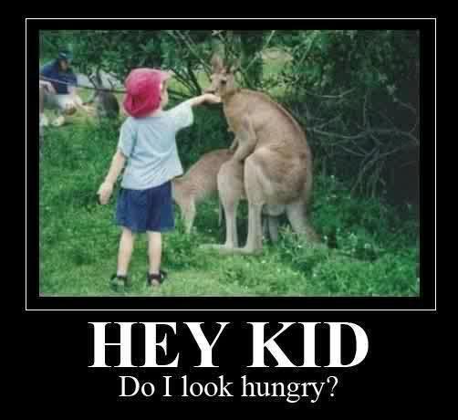 Do I look hungry?