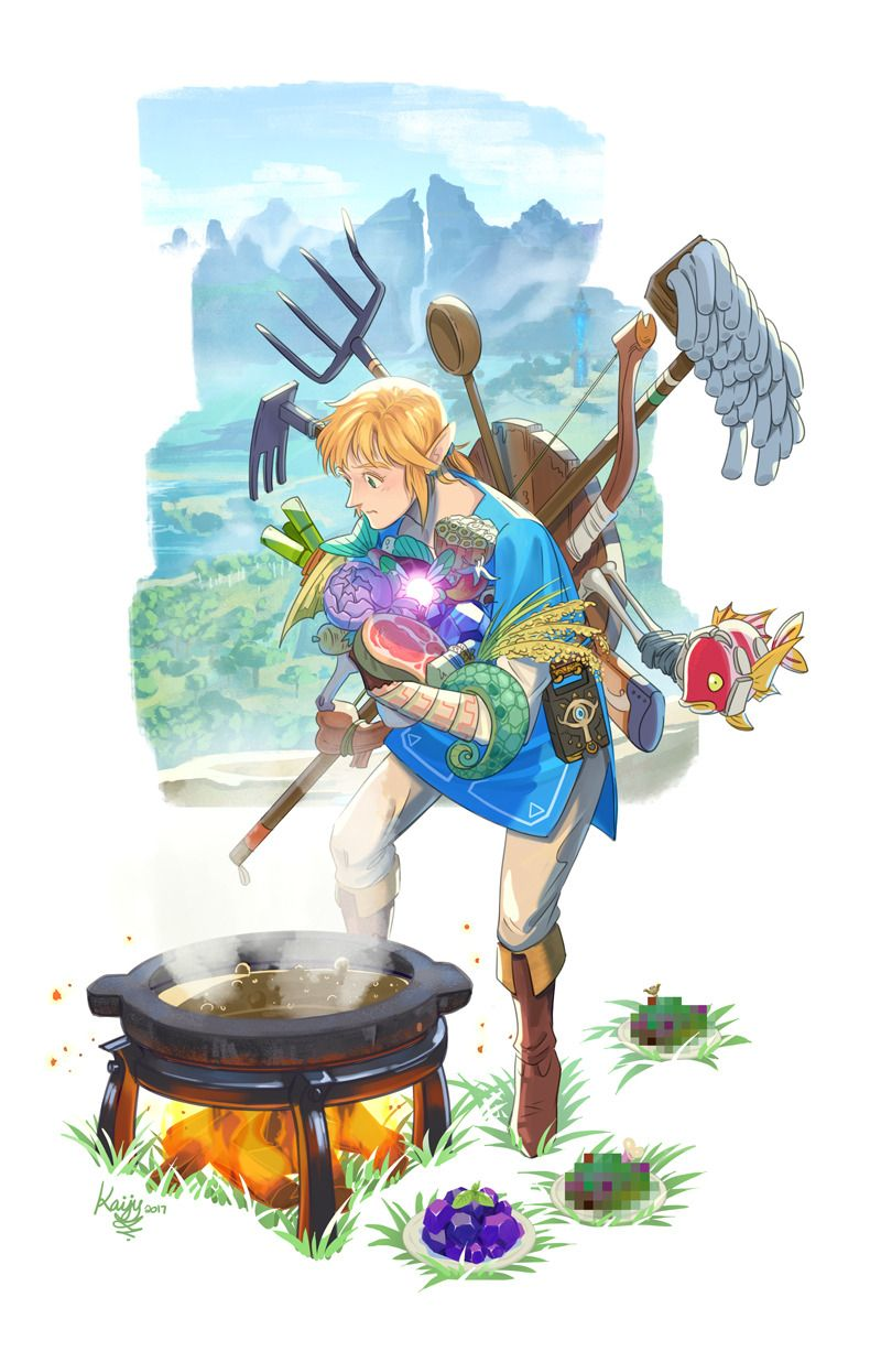 Link Breath Of The Wild Legendary Hero Look At All That Dubious