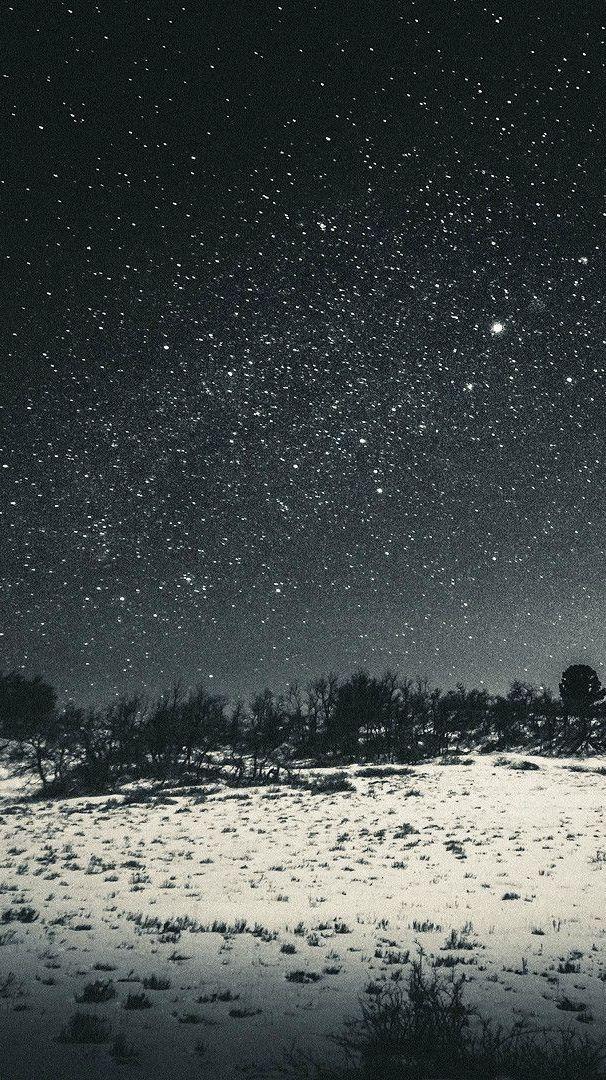 Зимняя Ночь Обои На Айфон