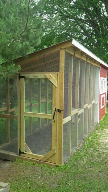 Easy Backyard Chicken Coop Plans