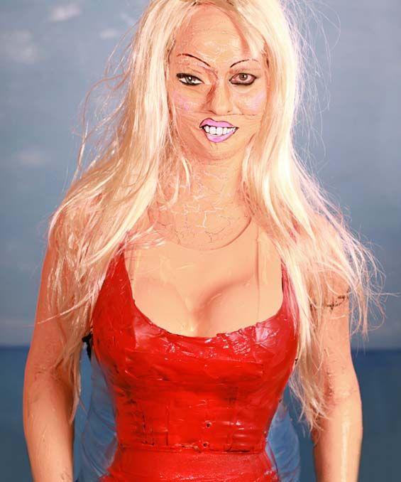 Image result for david hasselhoff sex doll jokes