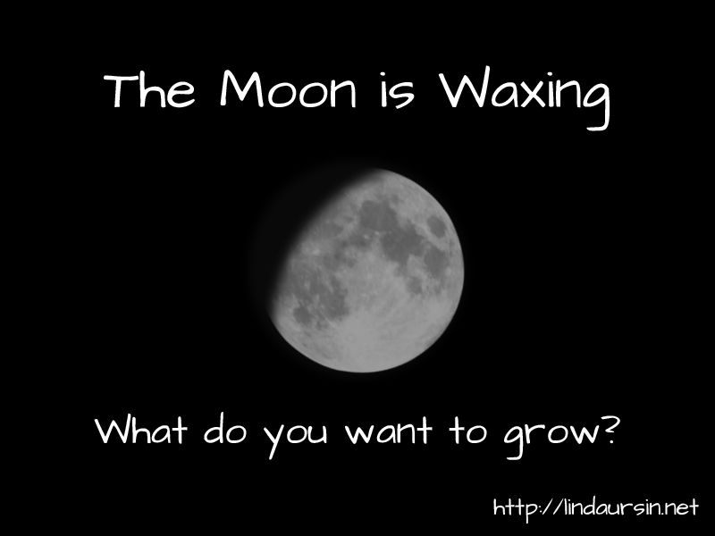 The Moon is waxing. What do you want to grow