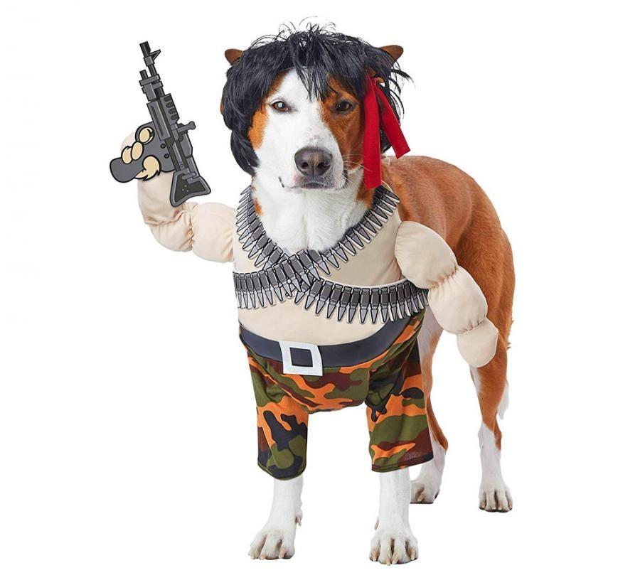 Rambo Dog Costume Pet Costumes Dog Halloween Costumes Dog Costumes Funny